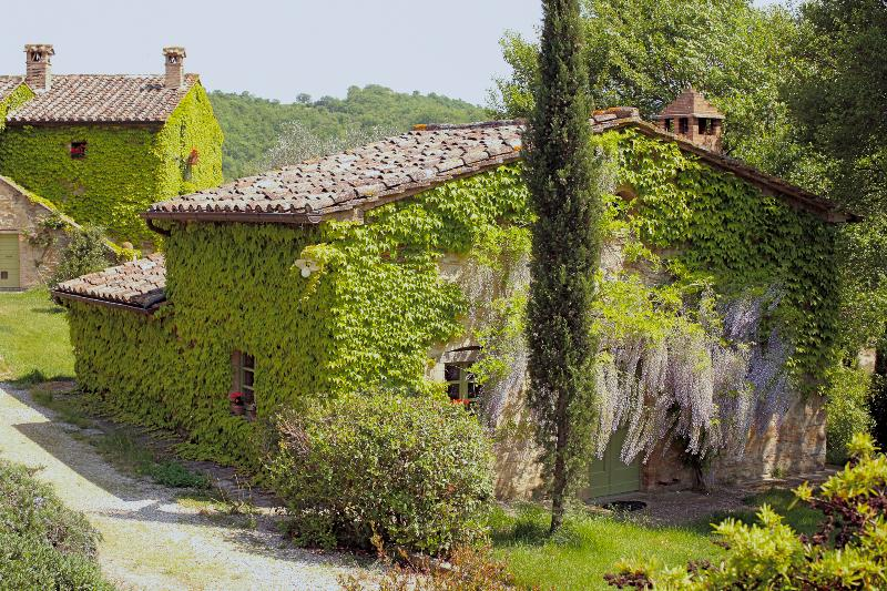 Farmhouse on Large Estate in Umbria  - Tenuta Regina - Nina - Image 1 - Montone - rentals