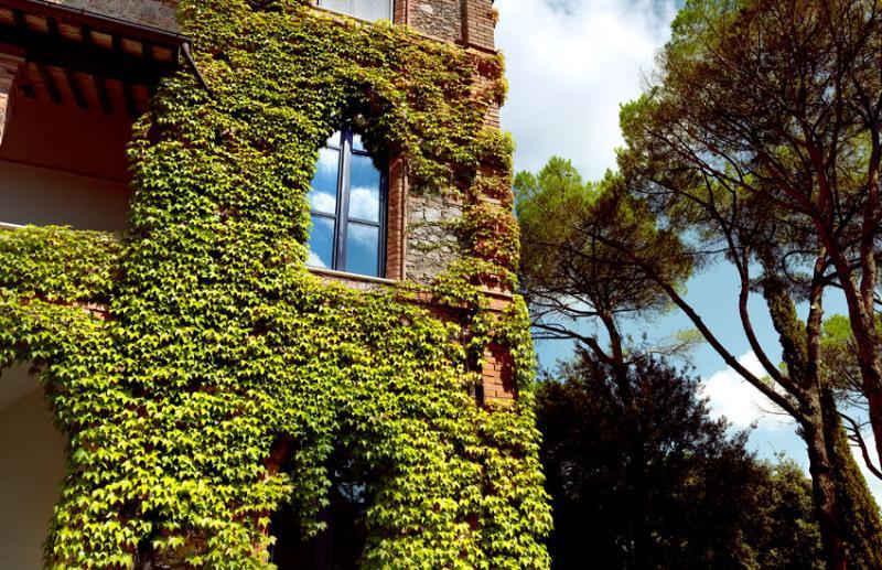 Tuscany Villa with Pool and Gardens - Villa Placido - Image 1 - Chiusi - rentals