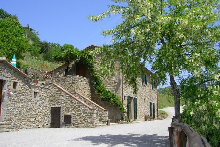 Farmhouse in Tuscany with Five Bedrooms and Bathrooms near Cortona  - Le Due - Image 1 - Cortona - rentals