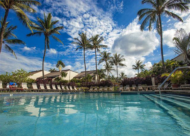 Maui Kamaole E203 - 2B 2Bath Great Rates Sleeps 4 - Image 1 - Kihei - rentals