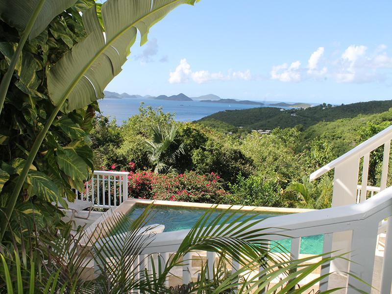 Ocean View over Pool - Perelandra Villa - Cruz Bay - rentals
