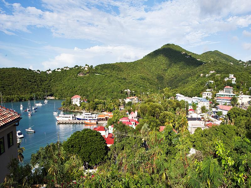 Battery Hill View Overlooking the village of Cruz Bay - Panacea Condo - Cruz Bay - rentals