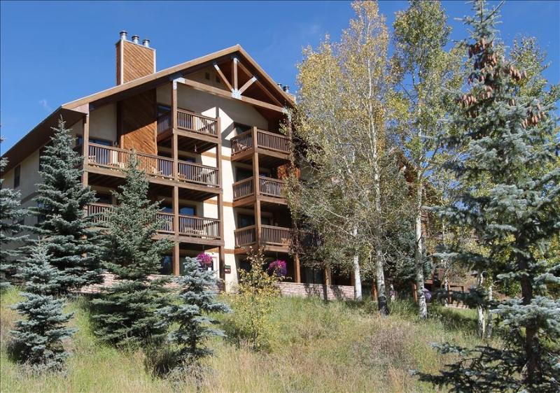 Great 2 Bedroom condo, hot tub, short walk to base area. 5th nt free! - Image 1 - Crested Butte - rentals