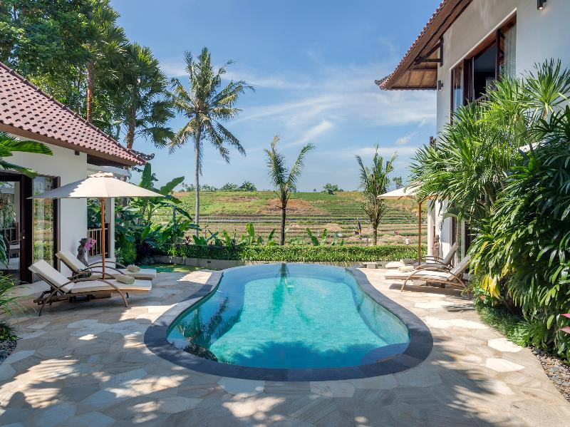 1. Villa Damai - Pool view - Villa Damai - an elite haven - Canggu - rentals