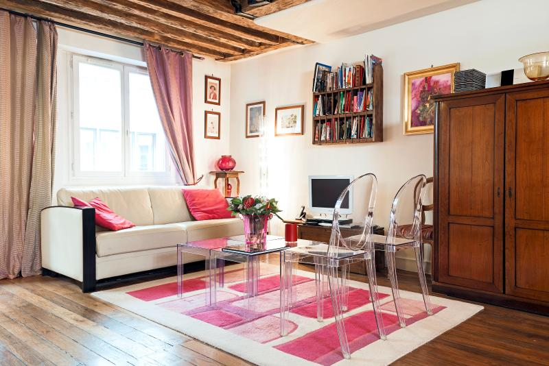 Stunning loft in the very heart of Paris (Louvre) - Image 1 - Paris - rentals
