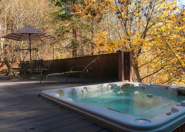 Bear Paw~A Cozy 2 bedroom, hot tub, 5 minute drive to Village of Leavenworth - Image 1 - Leavenworth - rentals
