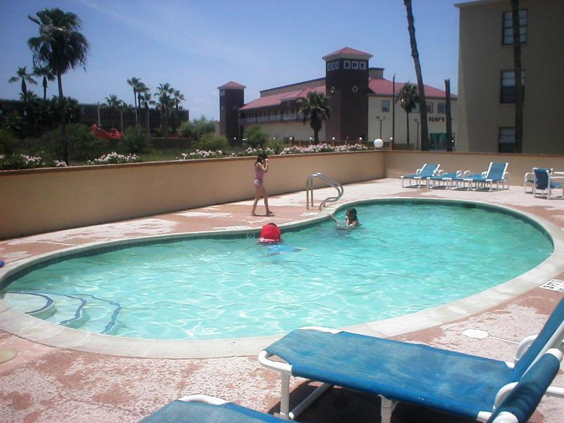 Habitat Luxurious Mid island 2 minute walk 2 beach - Image 1 - South Padre Island - rentals
