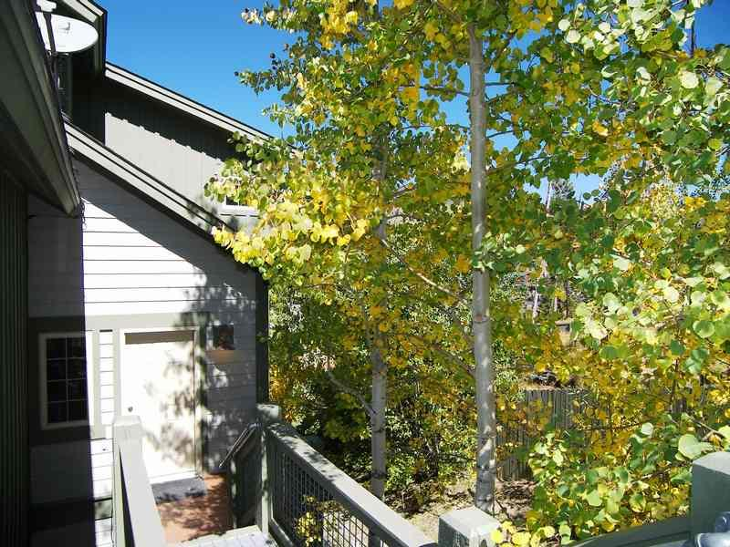 Anemone Townhome - Anemone Townhome 3 bed 3 bath - Dillon - rentals
