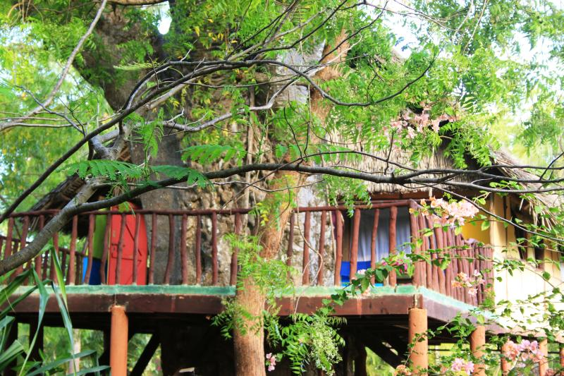view from the garden - Mbuyu treehouse - Diani - rentals