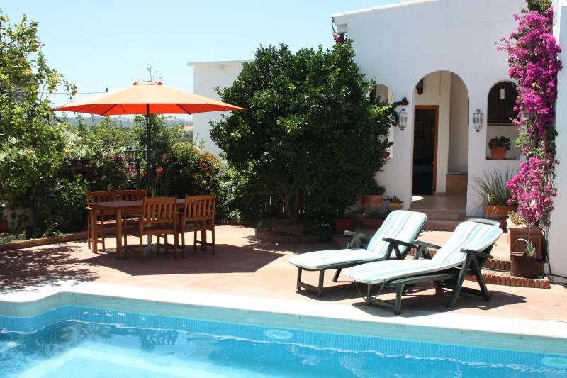 Garden and pool - Limonero - Vejer - rentals