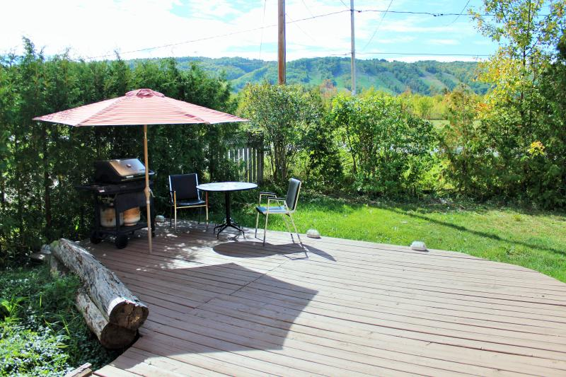 3 Bed With Hot Tub And Great Views Of The Mountain - Image 1 - Blue Mountains - rentals