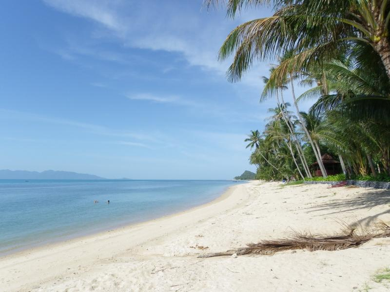 Bang Por Beach at 40 meters. - Bang Por Beachfront Resort -  Villa PALM - Mae Nam - rentals