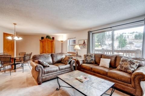 Spacious, with Lovely View! - Tyra Summit - Breckenridge - rentals