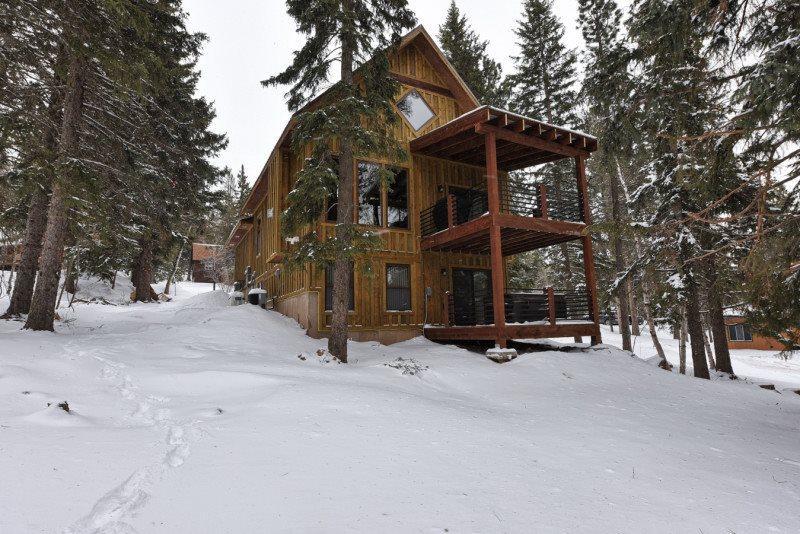 Lost Buffalo Lodge - Image 1 - Lead - rentals