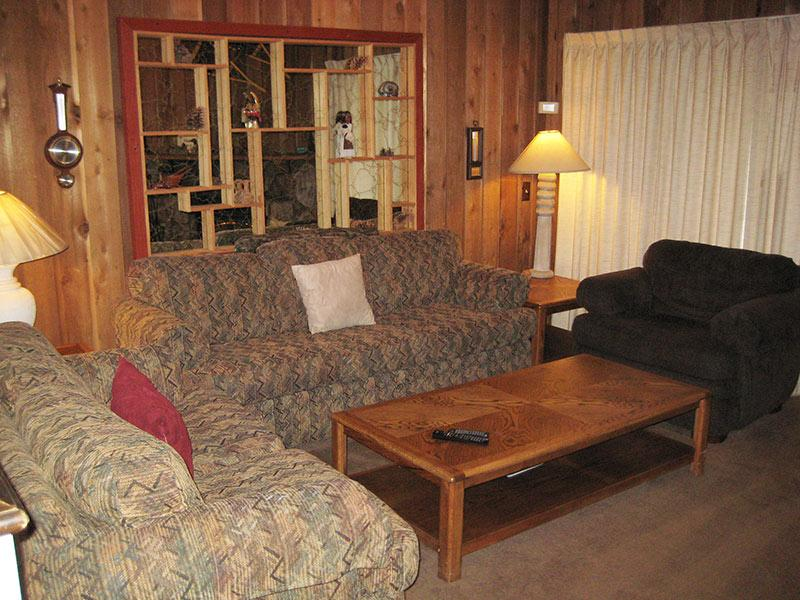 Living Room - Courchevel - CVL42 - Mammoth Lakes - rentals