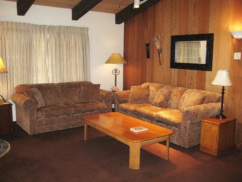 Living Room - Chateau Sans Nom - CSN29 - Mammoth Lakes - rentals