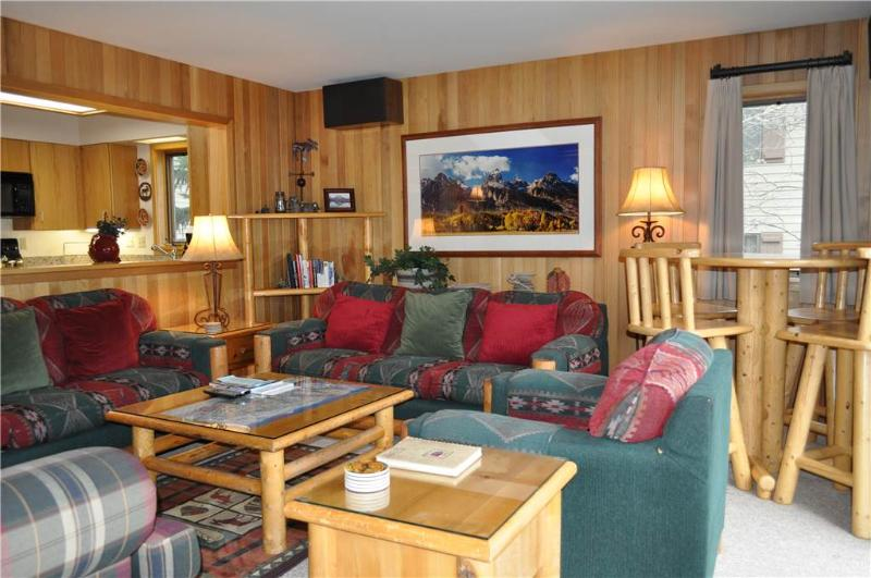 Wind River #15 - Image 1 - Teton Village - rentals