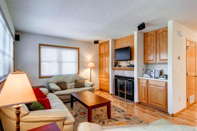 3 BR/ 3.5 BA stunning townhouse for 7, magnificent views and private hot tub - Image 1 - Silverthorne - rentals