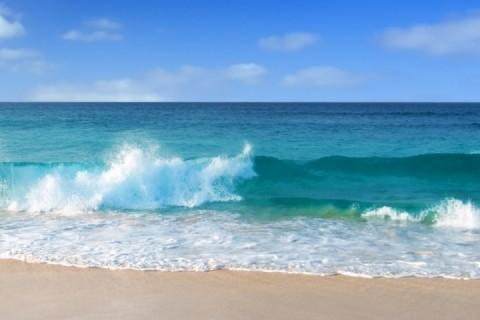 Beach Cottage just 3 short blocks from Ocean - Image 1 - Indialantic - rentals
