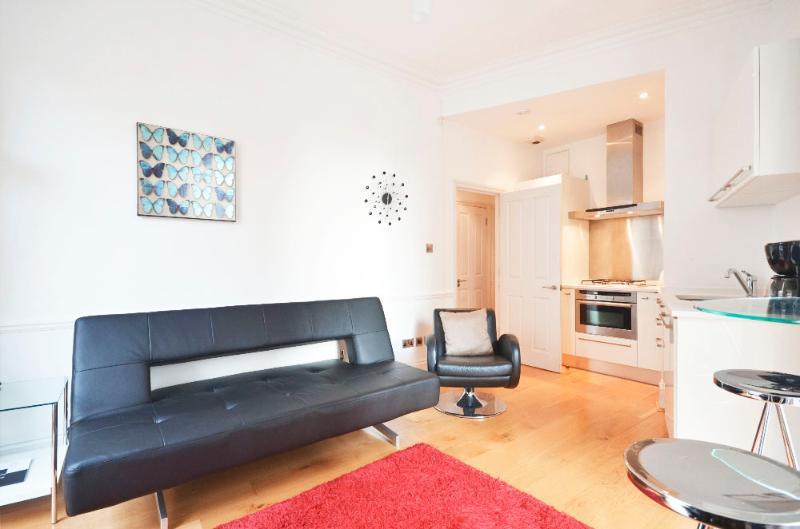 uberlondonapartments - lounge area - Charles Dickens House - London - rentals