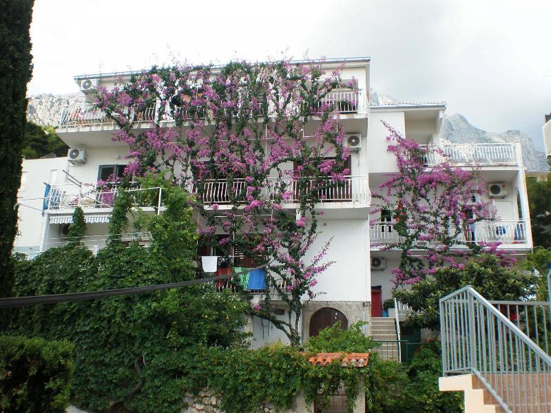 house - 7774  SA4(2+1) - Baska Voda - Baska Voda - rentals