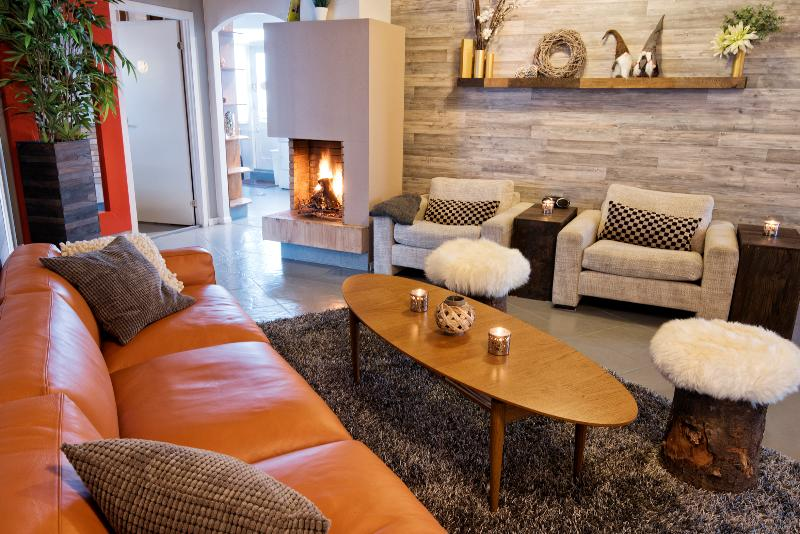 Living room with fireplace - B14 City Centre Penthouse for groups - Reykjavik - rentals
