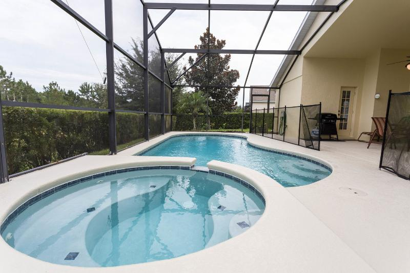 The Pool - Hawks Nest Villa - Disney Area with Saltwater Pool - Clermont - rentals
