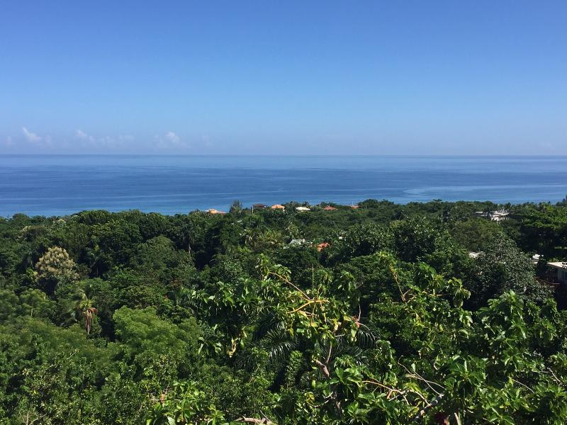View from the rooftop terrace - Boarding House-Sleeps 2 to 14 Affordable Comfort - Rincon - rentals