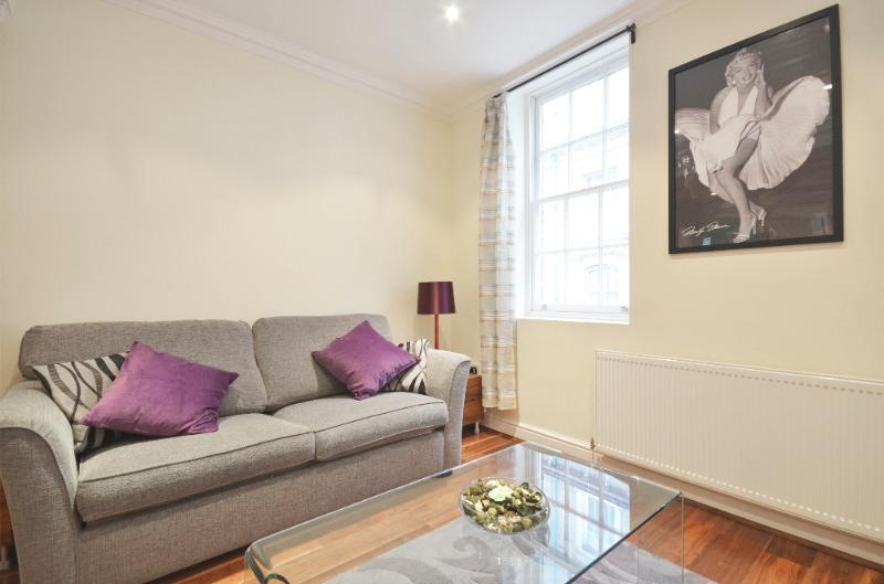 uberlondonapartments - lounge - A spacious 2 bedroom apartment by Embankment Pier - London - rentals