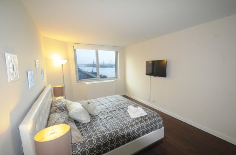 STUNNING 2 BEDROOM NEW YORK APARTMENT - Image 1 - Long Island City - rentals