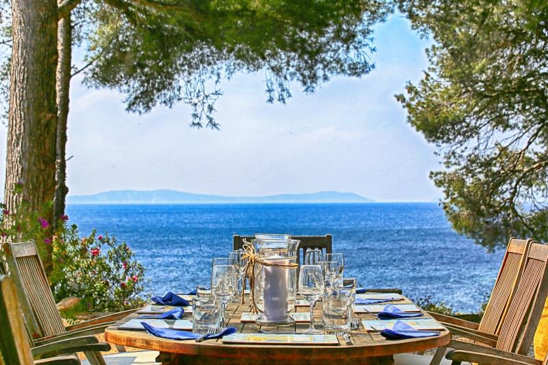 French Riviera Villa with Private Beach Access - Villa Le Dattier - Image 1 - Cavalaire-Sur-Mer - rentals