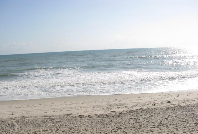 Sun Lovers Paradise in Vero Beach! - Beachside Efficiency - Vero Beach - rentals
