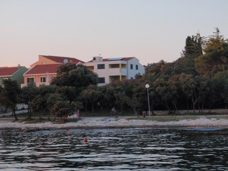 house - 7148  A2 Narancasti (4+1) - Petrcane - Petrcane - rentals