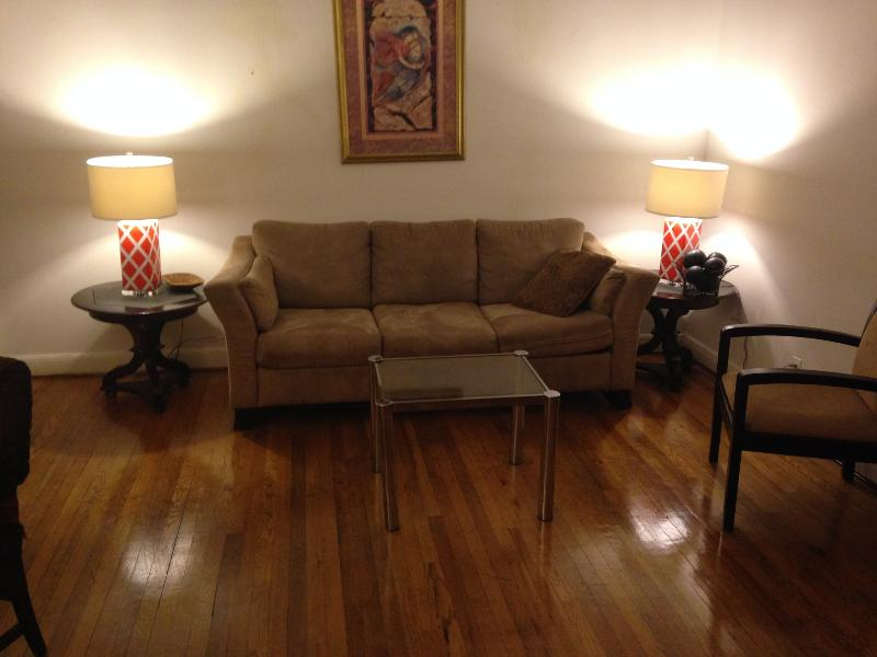 Large living area sleep 3 adults queens sofa bed and twin bed - CENTRAL PARK FIFTH  AVE APARTMENT  EXTRAORDINAIRE! - New York City - rentals