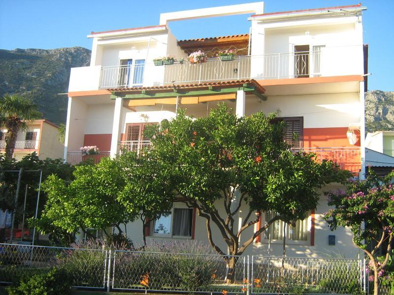 house - 2258  A3(2+1) - Gradac - Gradac - rentals