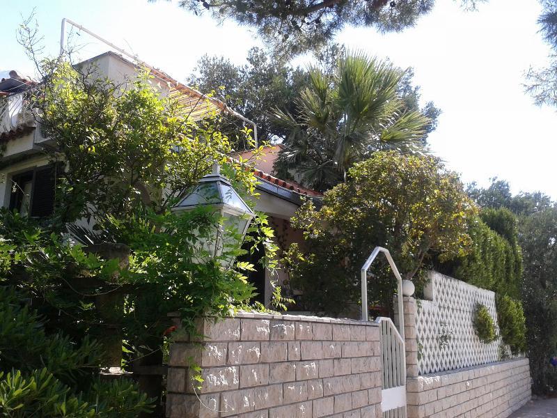 house - 3669  A1(2+2) - Promajna - Promajna - rentals