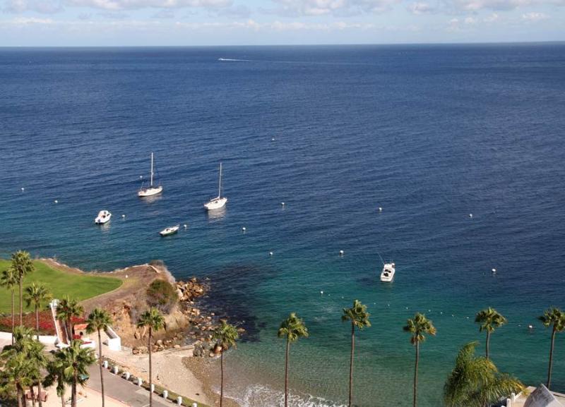 Hamilton Cove Villa 1-79 - Image 1 - Catalina Island - rentals