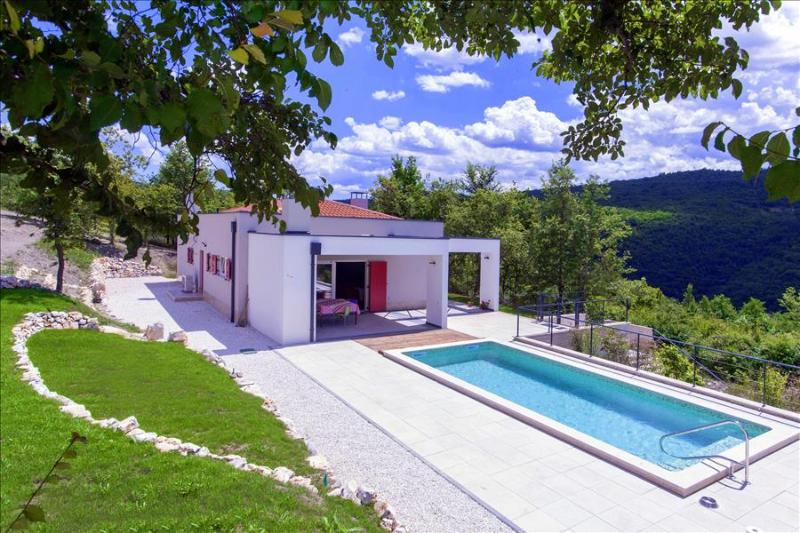 Montecolori - brand new design villa with pool in middle of nature - Image 1 - Vizinada - rentals