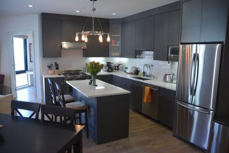 Luxurious Sun-Lit Condominium in the Heart of Prime Duboce Triangle - Image 1 - San Francisco Bay Area - rentals