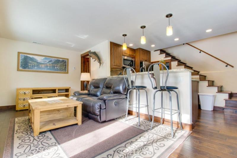 Dog-friendly, modern mother-in-law suite w/comfortable decor! - Image 1 - Vail - rentals