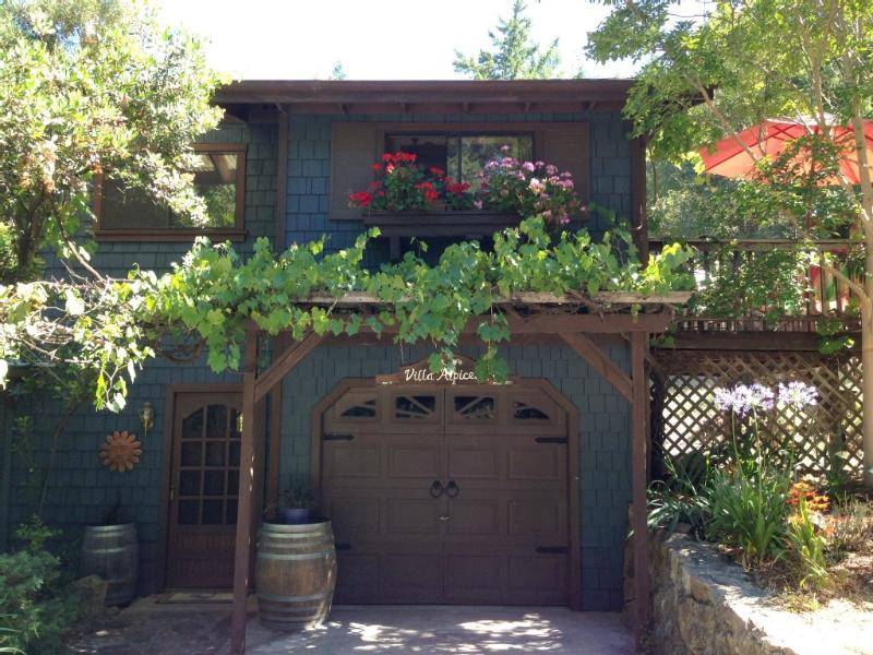 Villa Above the Vines ~ RA49 - Image 1 - Santa Rosa - rentals