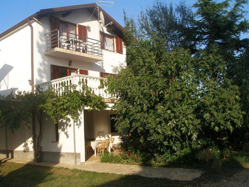 house - 001PRIV A2(4+2) - Privlaka - Privlaka - rentals