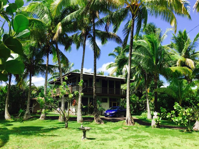 Pualani Tropical Jungle House, Kapoho gated community, Hawaii - Ocean View Pualani, Bikes, Hot Tub, Snorkeling! - Pahoa - rentals