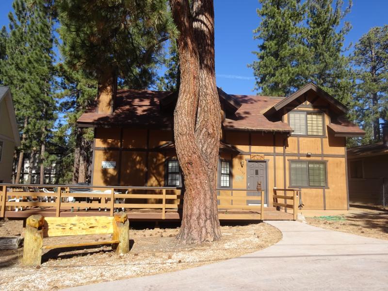 Dancing Bear Lodge - Image 1 - Big Bear Lake - rentals