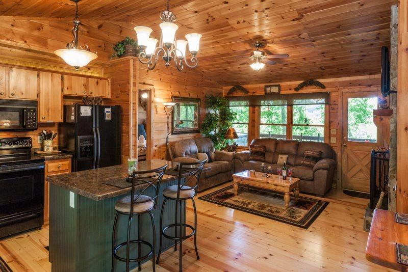 Little Bear Paw-Cozy tree top cabin - Image 1 - United States - rentals