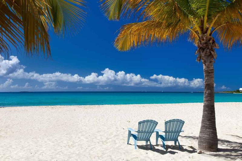 10-STAR VILLA ~ RENT ONE WEEK - GET ONE FREE! - Image 1 - Aruba - rentals