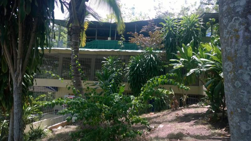 Tropical House - Cultural Immersion in a safe Cottage, private Domain - Puerto Plata - rentals