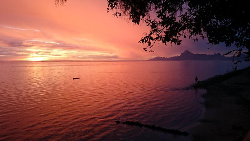 Beach - Villa Vahineria - Vacation rental - Tahiti  - tahitiinstyle - French Polynesia - Villa Vahineria - TAHITI - beach 4 bedrooms - TIS - Punaauia - rentals