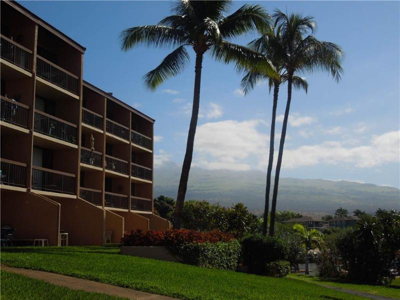 Maui Vista #3101 - Image 1 - Kihei - rentals