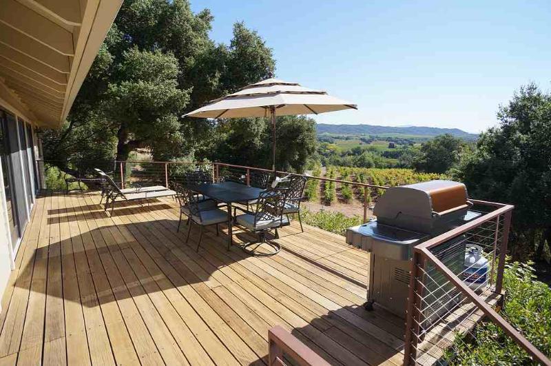 Colline Vineyards Estate - Image 1 - Healdsburg - rentals